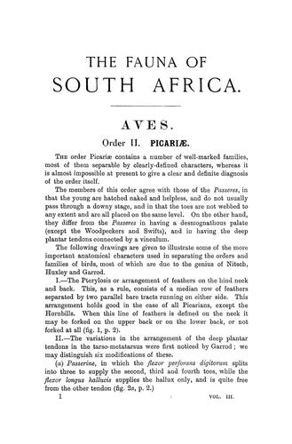 Download The birds of South Africa